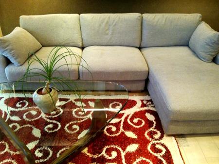sofa02-450pix.jpg