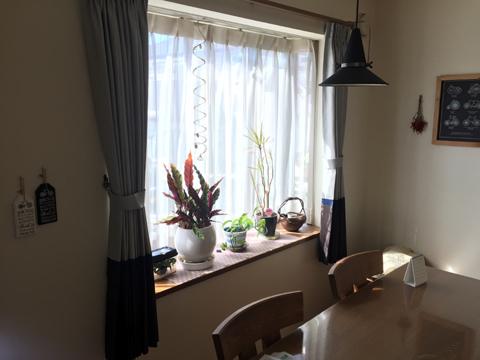 curtain5.jpg