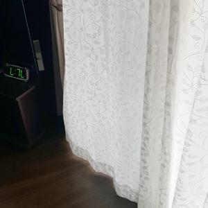 curtainF2.jpg