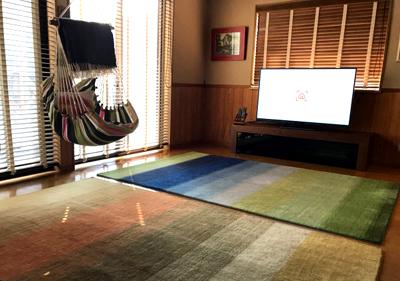 hagumi-tv.jpg